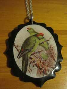 NZ Parrot necklace from Vesta (Queenstown).