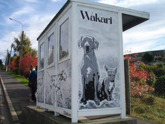 Wakari