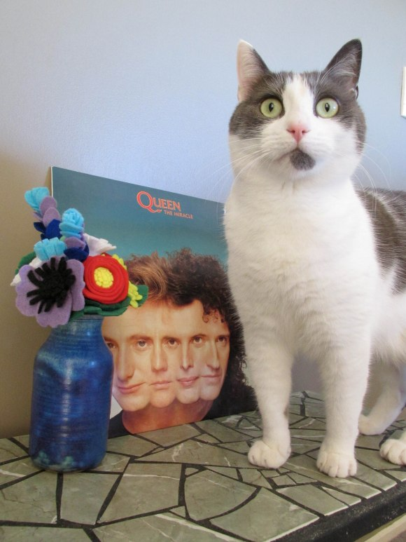 All you need for Mother's Day: flowers, good music and a feline friend!