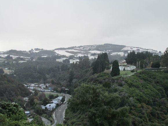 Snow on Mount Cargill