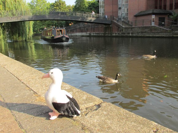 Ross making friends on the Kennet and Avon Canal