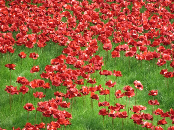 Ceramic poppies forming part of 'Blood Swept Lands and Seas of Red' installation, Tower of London